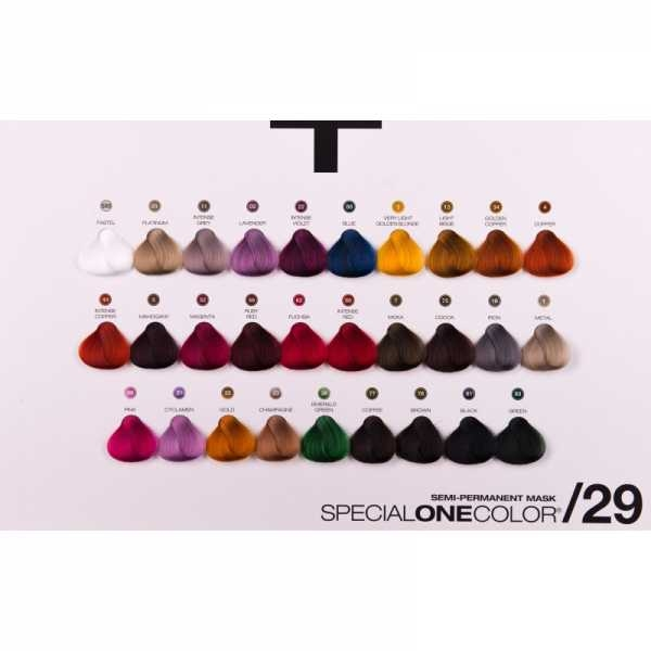 COLOR CHART BLEACH&COLOR + SPECIAL ONE MASK